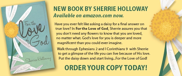 New Book by Sherrie Holloway